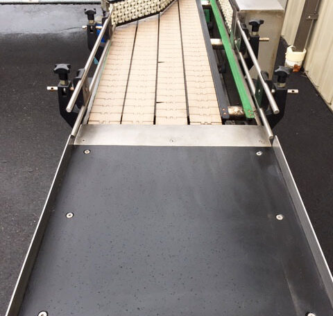 Arrowhead Feed Table Conveyor (7)