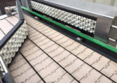 Arrowhead Feed Table Conveyor (9)