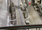 Case Conveyor g