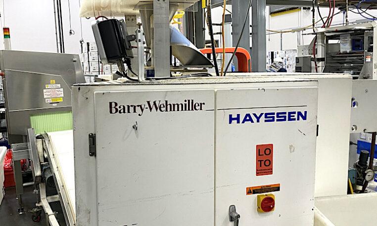 Hayssen VFFS Bagger c